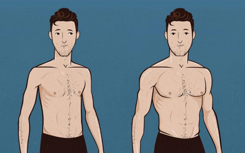 Comment prendre du poids ectomorphe