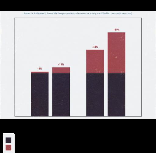 graphique consommation calories ectomorphe